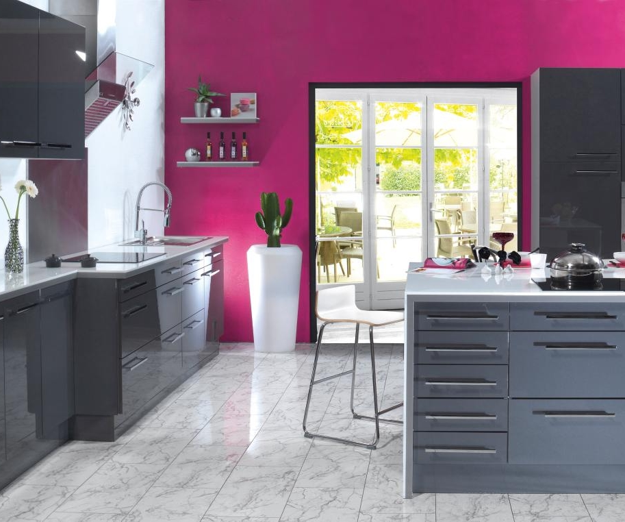 D co cuisine fushia gris for Decoration cuisine grise
